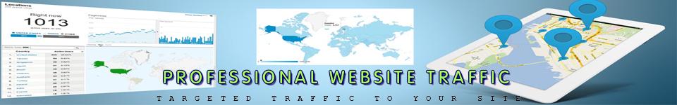 TRAFFIC WEBSITE PROFESIONAL