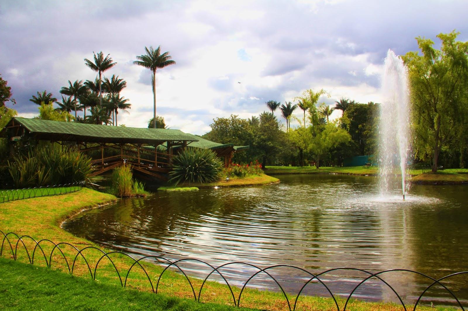 Desde bogot oasis de paz es el jard n bot nico de for Jardin botanico de liubliana
