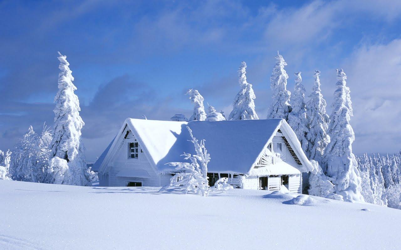 http://1.bp.blogspot.com/-7-HsyFFRZt0/T9QZAIRXVeI/AAAAAAAAA5s/fPhgztzNbPg/s1600/iarna1.jpg