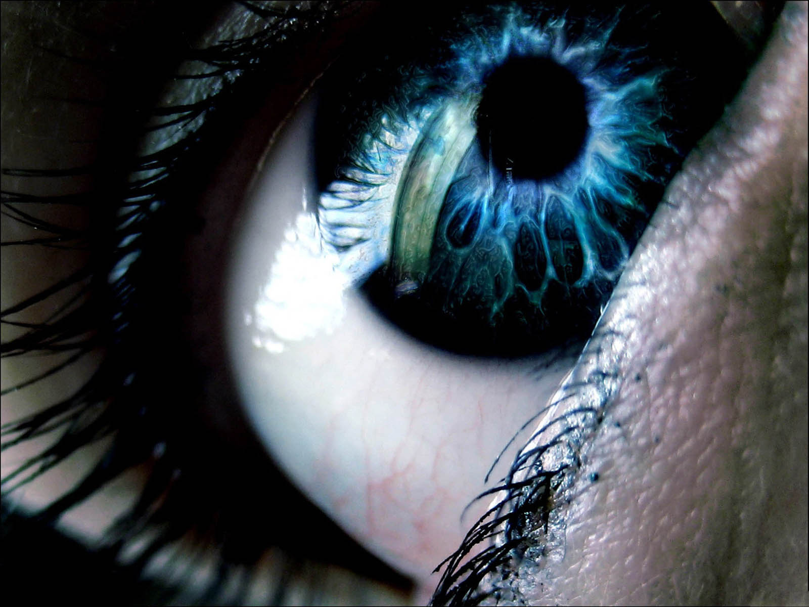 You are watching the 3d eye wallpapers 3d eye desktop wallpapers 3d