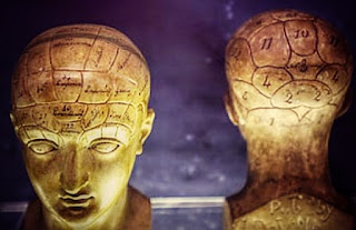 Memory, Thinking and Brain Function