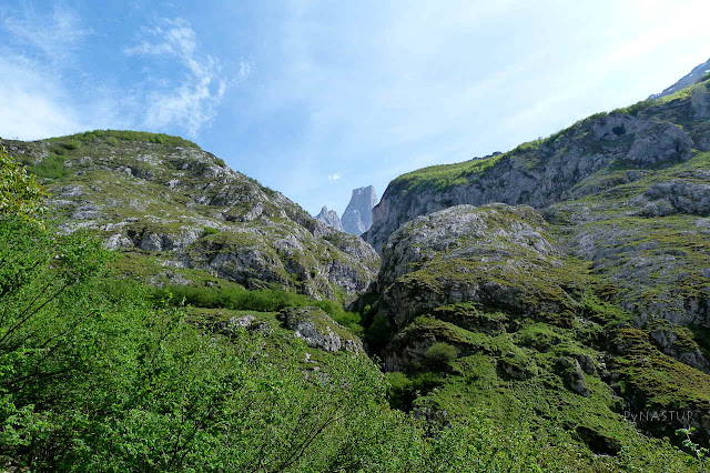 Pico Urriellu desde el mirador de Bulnes