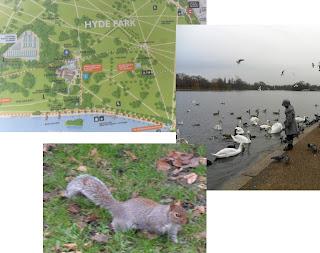 Imágenes de Hyde Park, Londres, enero 2013
