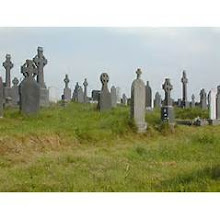 Looking For Cemetery Info In Ireland?