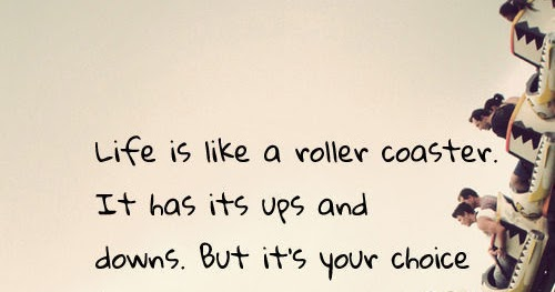 life is like a roller coaster essay