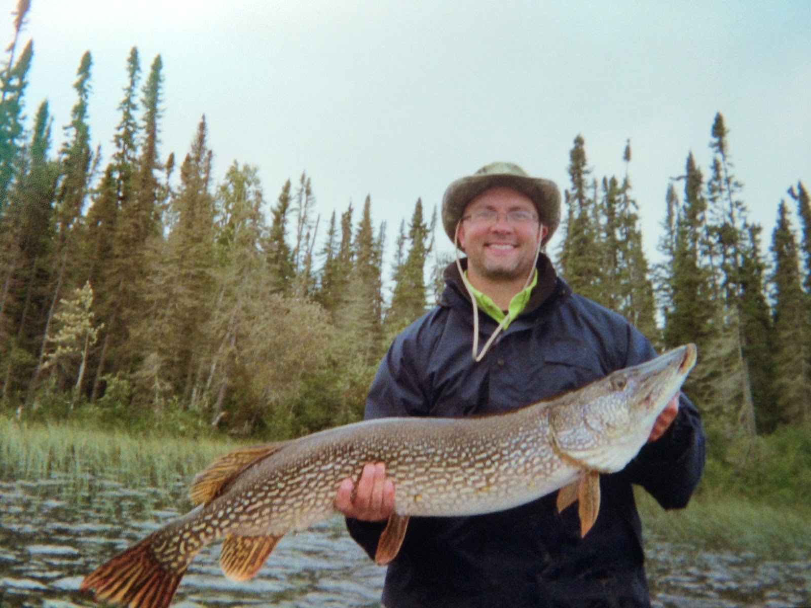 red lake fishing reports ontario for monster northern pike