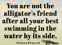 You are not the alligator's friend after all your best swimming in the water by its side.