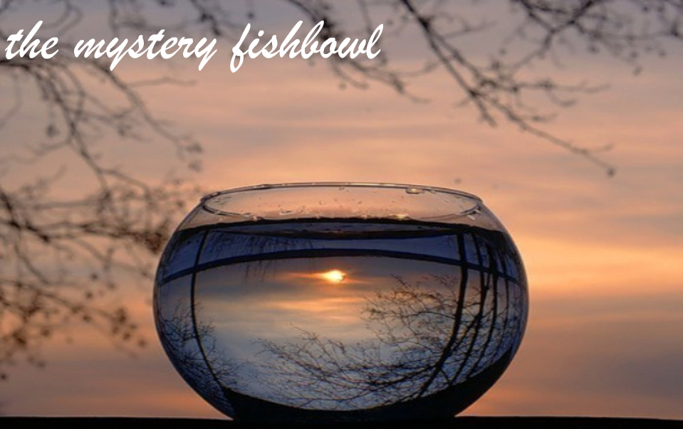 The mystery fishbowl