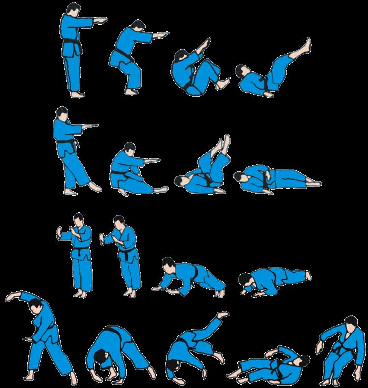 golpes jiu jitsu faixa preta
