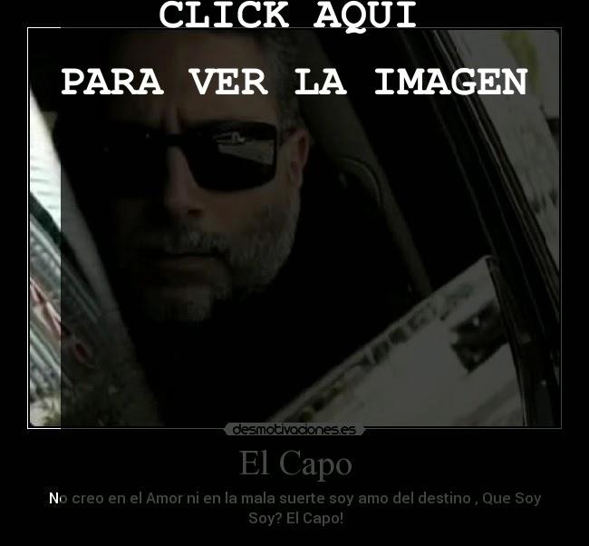frases del capo para enamorar, imagenes del capo con frases