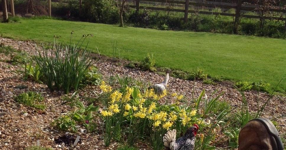 John Grimshaws Garden Diary: Gardening Selfies for World