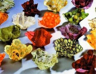 Vaisselle Comestible Produits 100% Organiques