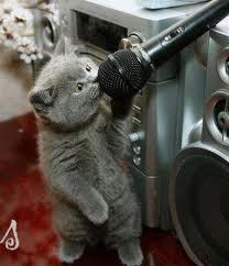 Latihan Vokal Suara Tinggi