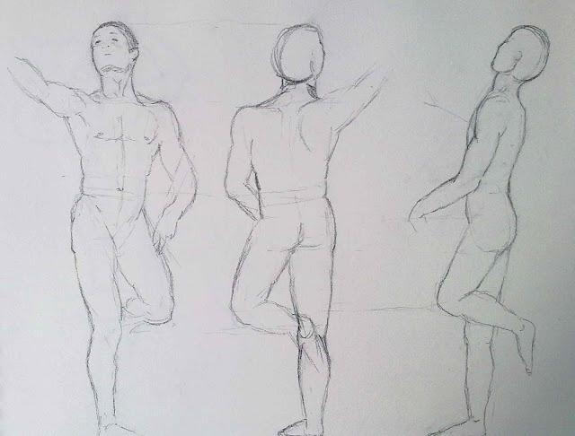 dibujo anatomico en tres vistas