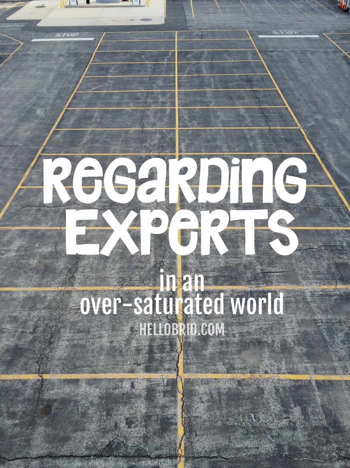Regarding Experts in an over-saturated world