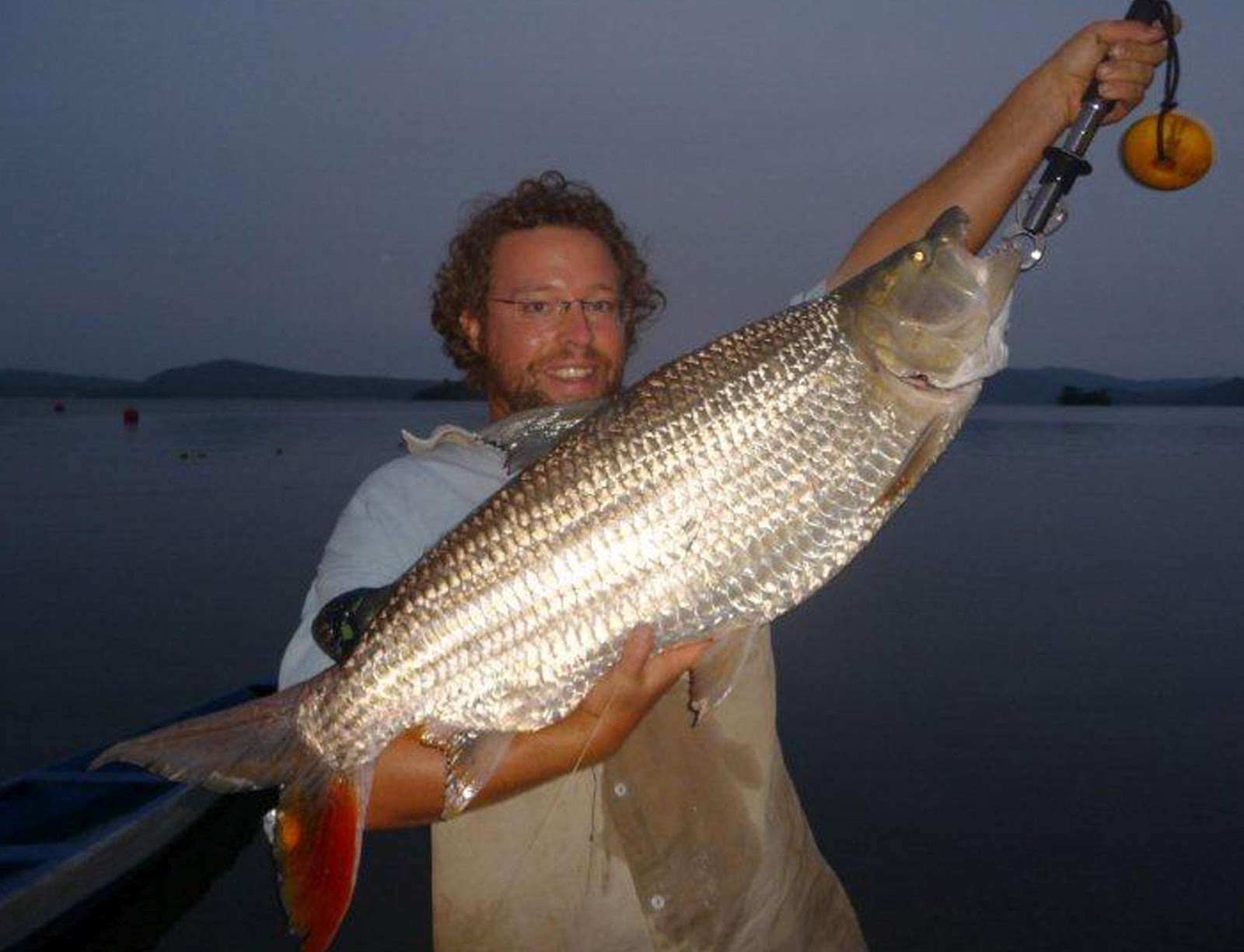Big fishes of the world tigerfish north african for Tiger fish pictures
