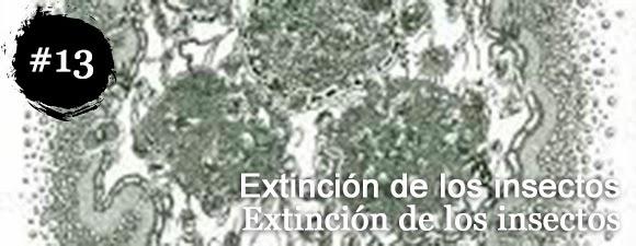 Extinción de los insectos - Extinción de los insectos