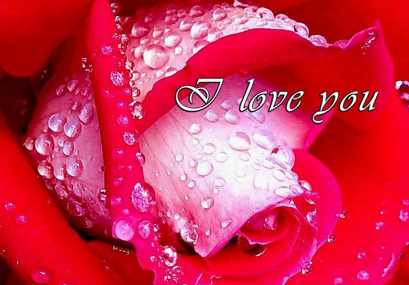 imagenes romanticas de amor, imagen de amor romanticas de amor
