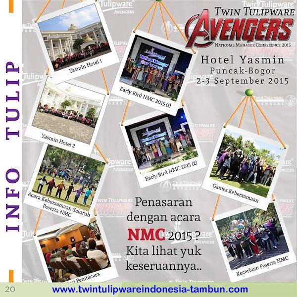 Info Tulip : Avengers 2015