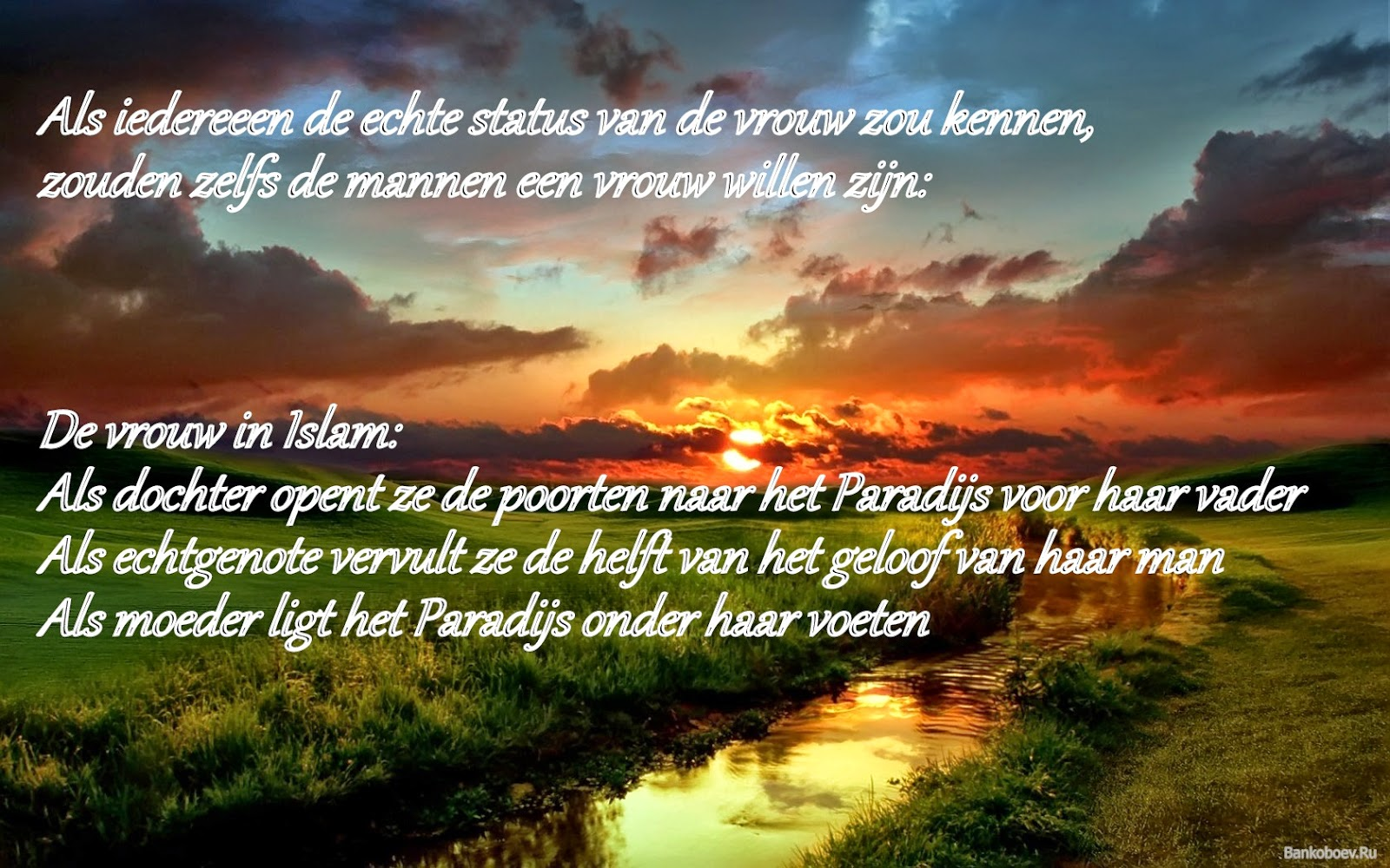 Citaten Natuur : Citaten en wijze woorden uit de islam ware status van
