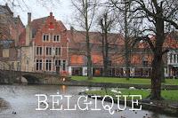http://voyages-et-cie.blogspot.fr/search/label/Belgique