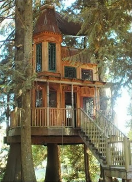 Mindblowing planet earth world 39 s best tree house for World best house image