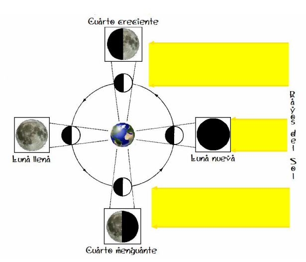 El universo sobre mi la luna for Proxima luna creciente