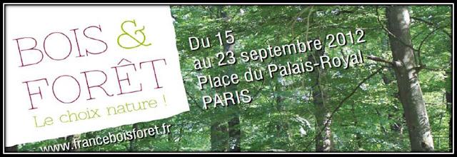 bois et forêt, foret éphémère Place Palais Royal Paris 2012