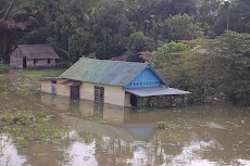 Pemerintah Lamban Tangani Korban Banjir di Jambi