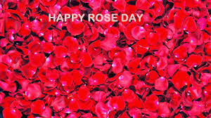 Happy-Rose-Day-2016-Greeting-for-Facebook-and-Whatsapp