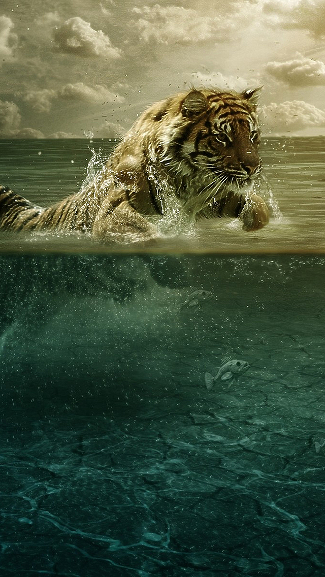 water+tiger+iPhone+5+rooteto iPhone 5 Resimleri