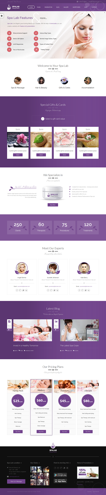 Premium Beauty Salon WordPress Theme
