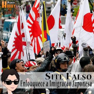 Pocket Hobby - www.pockethobby.com - Site falso enlouquece a Imigração Japonesa