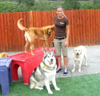 Truckee-Tahoe Pet Lodge offers friendly stay for your pet during summer visits to Lake Tahoe