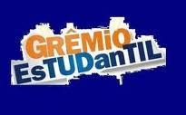 O Grêmio Estudantil é a organização que representa os interesses dos estudantes da escola.