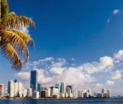 Nursing Schools in Florida - Some Information | Nursing Schools