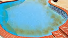 Common Pool Water Problems General Swimming Pool Information