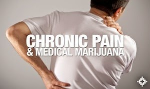 MMJ vs Chronic Pain