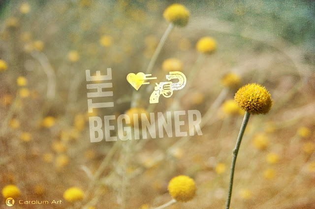the-beginner-fotografia-carolum-art