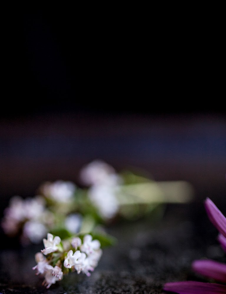 Crackers on the Couch: Edible Flowers, Thyme Blossoms