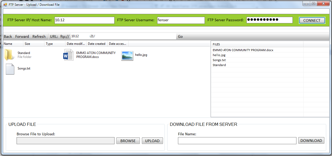 Download vb file ftp net from server