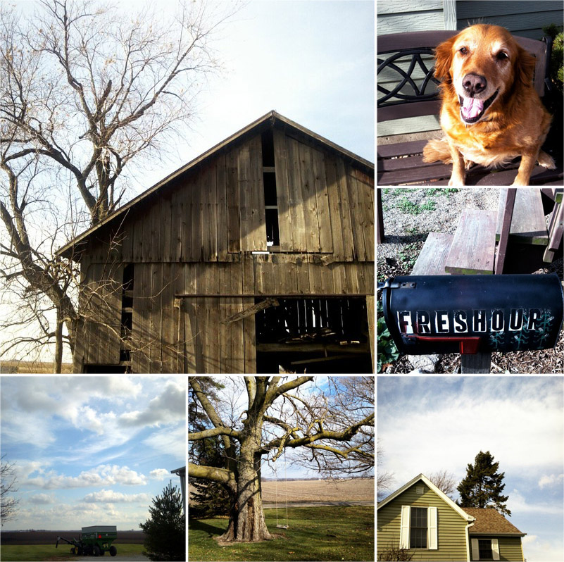 farm, barn, golden retriever, swing, tractor, lifestyle, Illinois