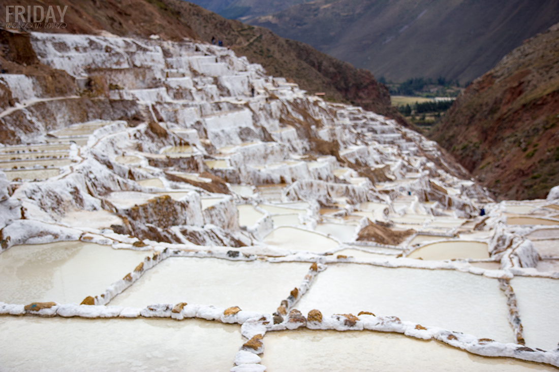Salt Mines: Maras Y Moray Peru