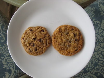 ATK Thick and Chewy Chocolate Chip Cookie versus Nestle Tollhouse frozen dough