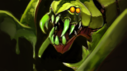 Venomancer, Dota 2 - Ancient Apparition Build Guide