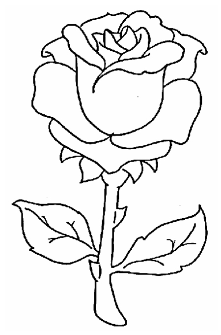 Image Rose Gorey crayon