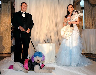 funny wedding photos: bride married with dogs