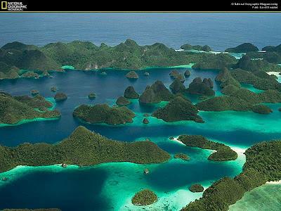 Taman Laut Raja Ampat Papua