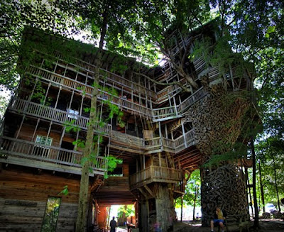 The World's Biggest Treehouse (14) 14