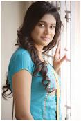 Manisha Yadav dazzling Portfolio Photos-thumbnail-5